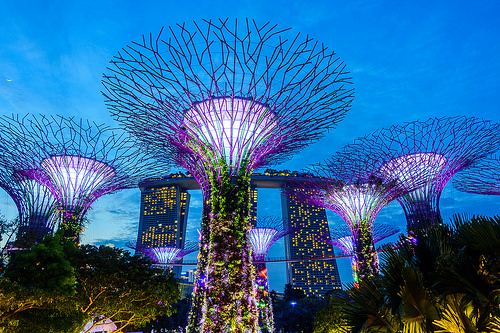 Singapore Parks Guide for Visitors